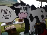 Kids at last year's Farm Fair learned how milk comes from a cow with this hands-on display!
